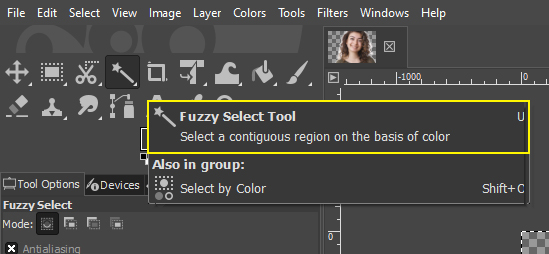 Fuzzy Selection Tool and Free Selection Tool