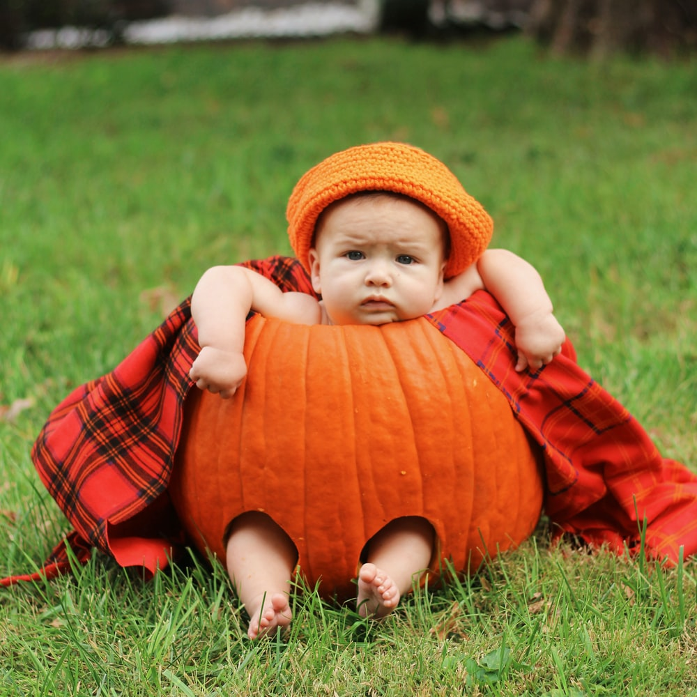 Guide for fall picture ideas