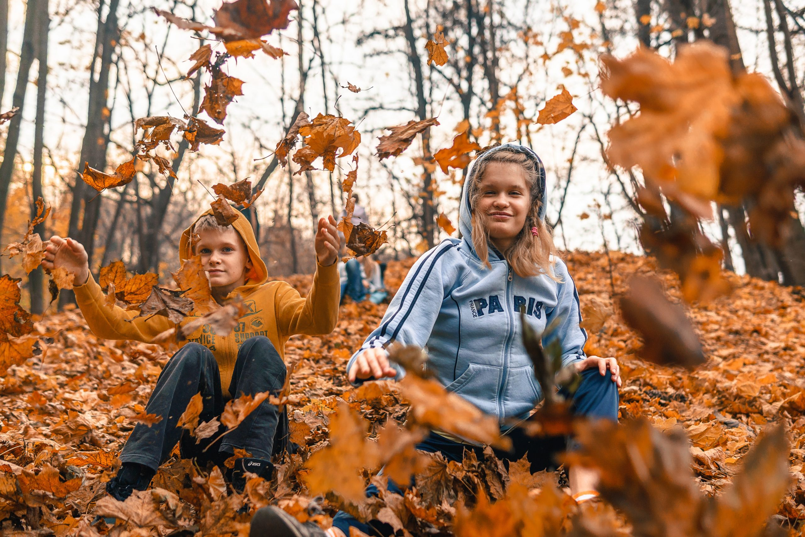 Fall autumn pictures by Slazzer